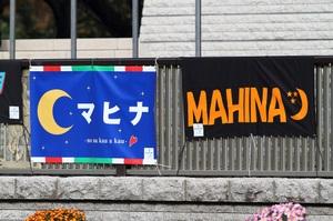 Mahina20101121_015